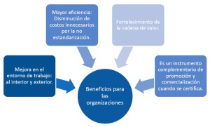 Beneficios de la calidad para las organizaciones: Mejor entorno de trabajo, mayor eficiencia, fortalecimiento de la cadena de valor, mayor promoción y comercialización.