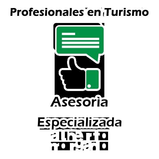 Icono Asesoría Especializada