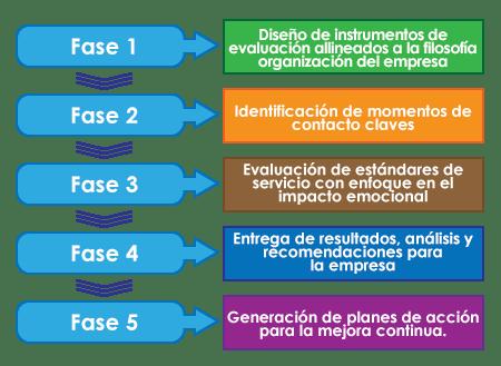1. Diseño de instrumentos de evaluación 2. Identificacion de momentos claves. 3. Evaluación de etándares 4. Entrega de resultados 5. Generación de planes para mejora continua